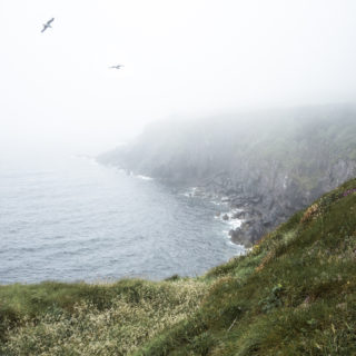 A Foggy Ireland Photo Journal