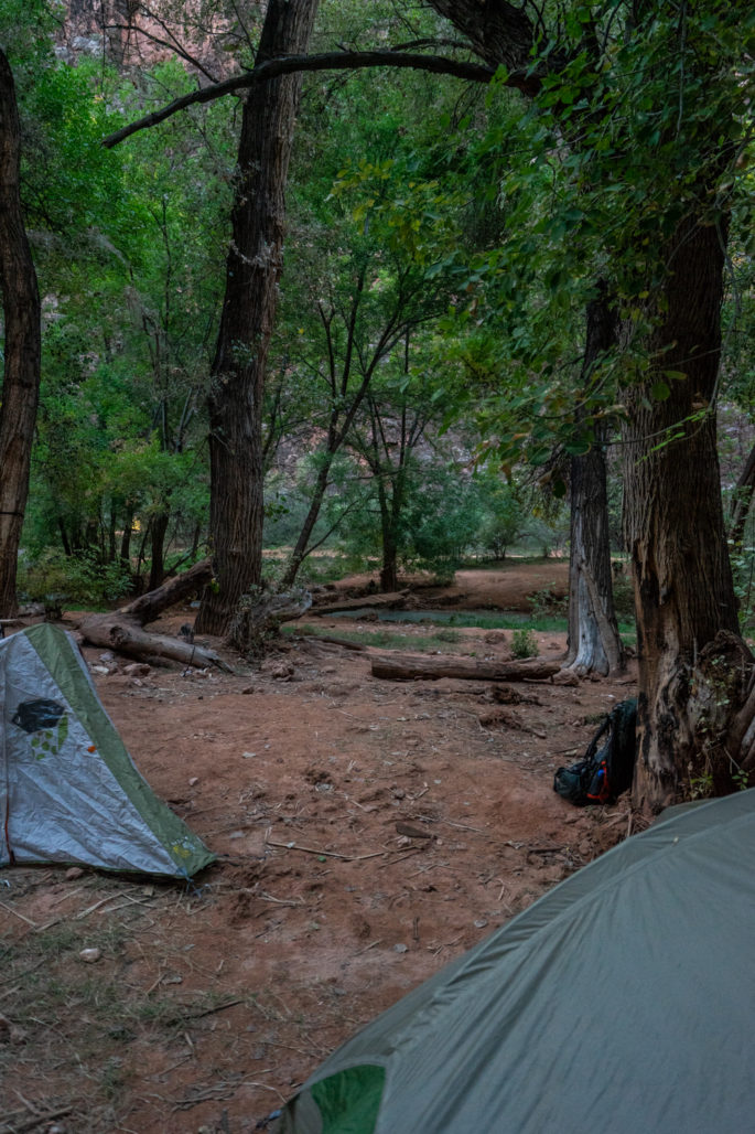 Campsites at Havasupai Campground