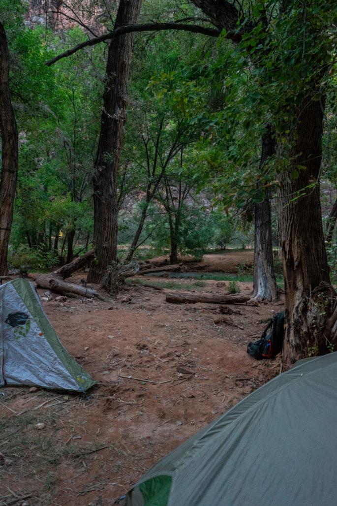 Campsites at Havasupai Campground