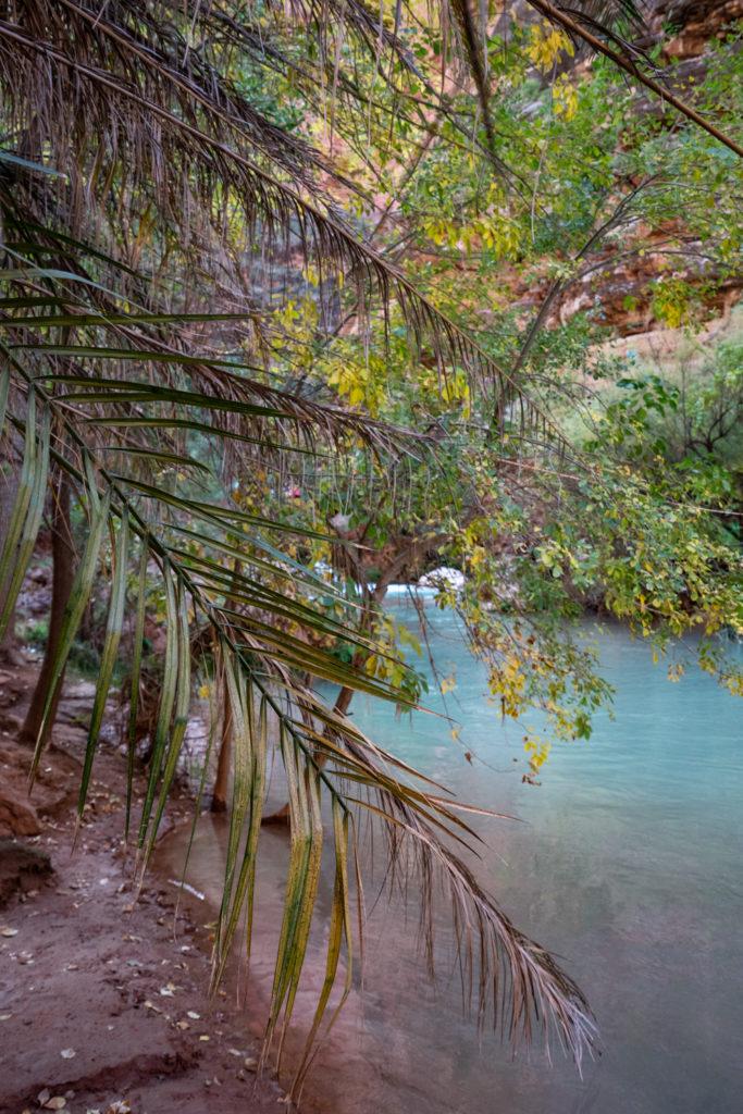 Havasupai in October