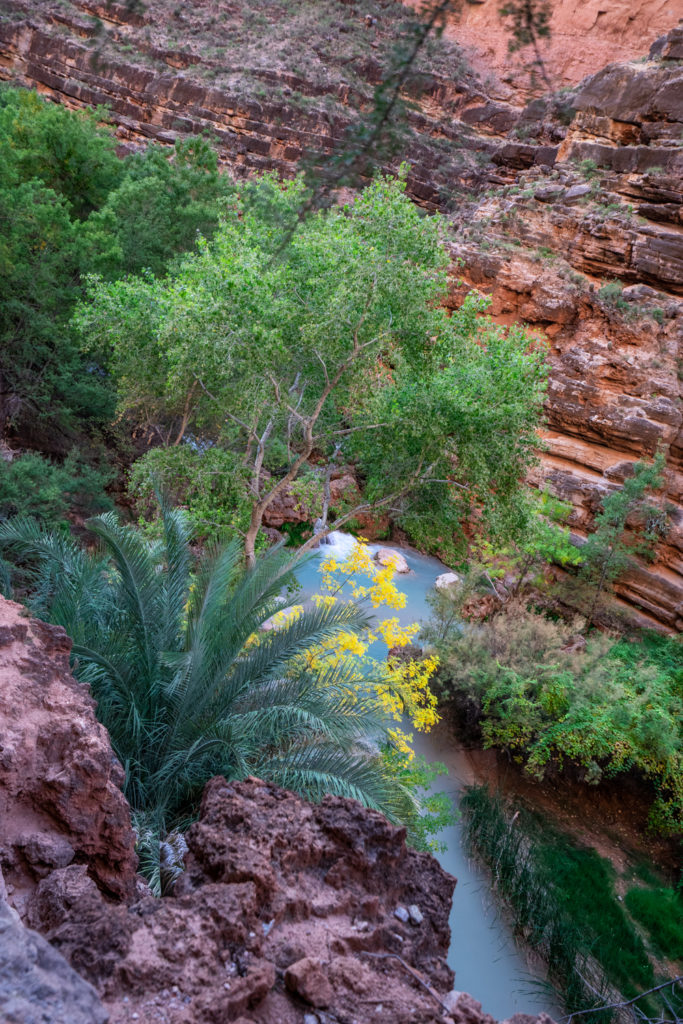 Havasupai in October: hiking to Beaver Falls