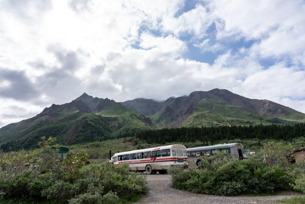 Denali Park Road bus tour