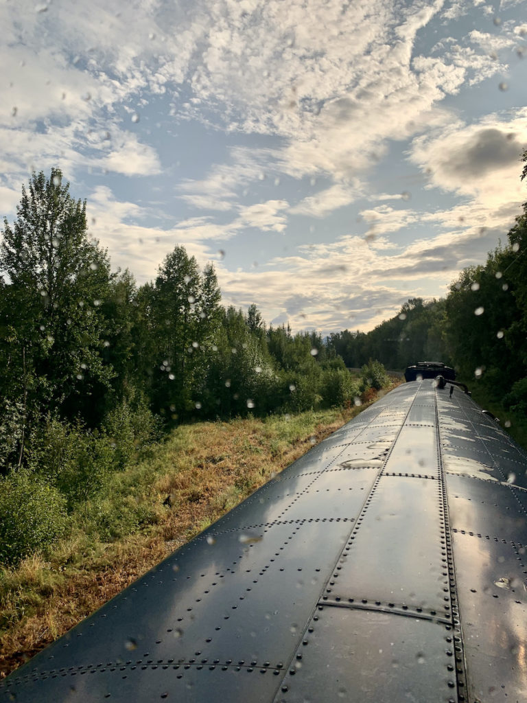 Denali Star Train Gold Service from Anchorage