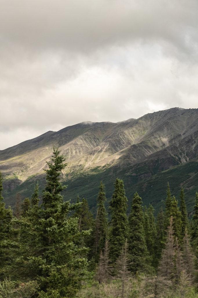 Views from the Denali Star Train near Denali National Park
